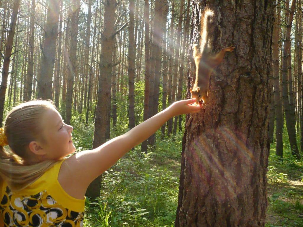 В период реабилитации желательны прогулки в сосновом лесу