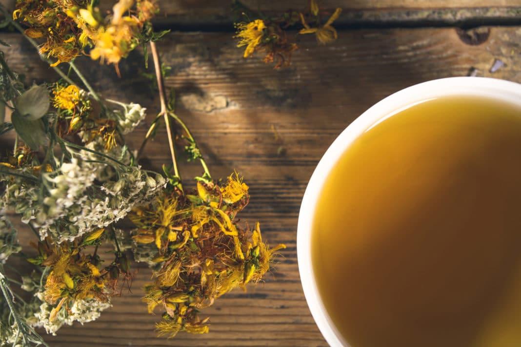 Чай из зверобоя при заболеваниях верхних дыхательных путей
