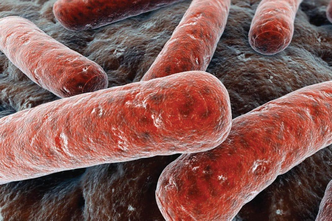 Носители туберкулеза могут даже не догадываться об этом