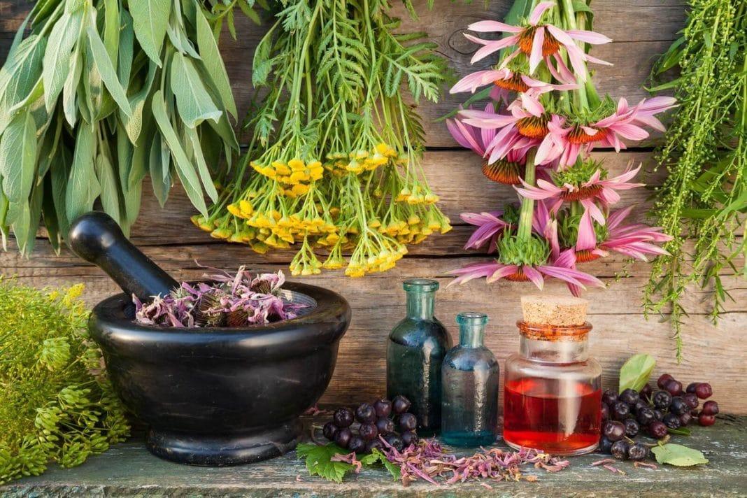 Лечим кашель без таблеток: самые эффективные и безопасные способы