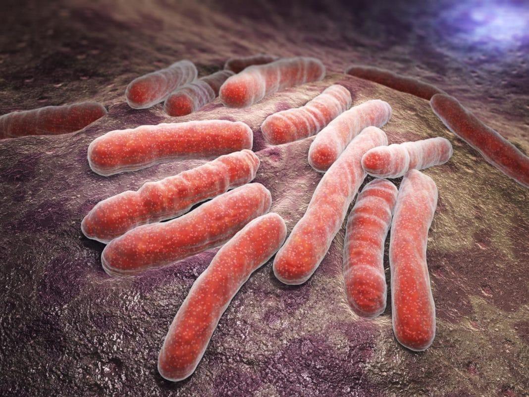 Туберкулез: можно ли вылечить и кто находится в группе риска?