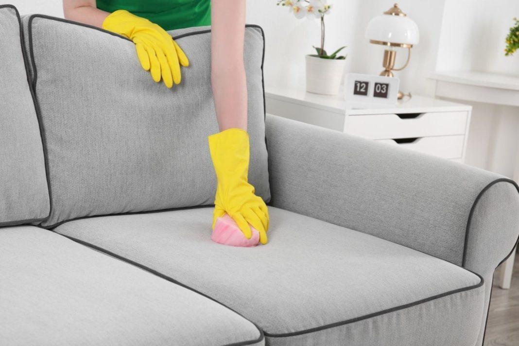 Как удалить запах животных с мебели?
