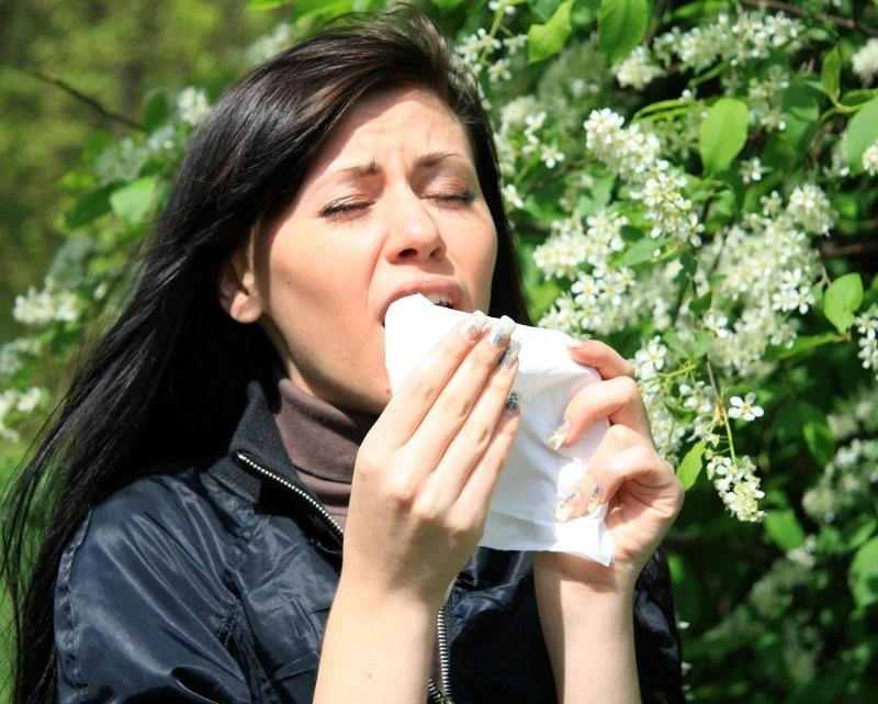 6 способов удержаться от громкого чихания на людях