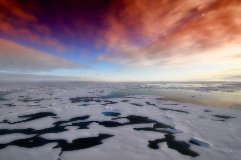 Экологи ликуют: за последний месяц воздух стал чище во всех странах мира