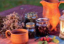 Народные средства от астмы